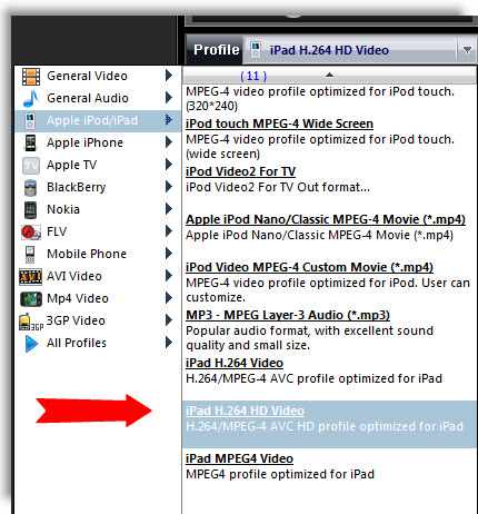 iPad Video Formats and Parameters